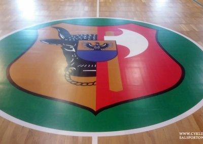herb miasta na sali sportowej